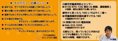 orangeribbon3-2-thumb-600x210-16284
